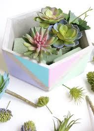 Succulent And Cacti Pictures Gallery Garden Design Decoration Outdoor Succulent Garden Design Cactus Arrangements