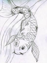 sketch koi fish 8 good koi fish drawings biological science