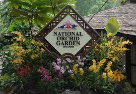 singapore botanic gardens parks u0026 nature reserves gardens