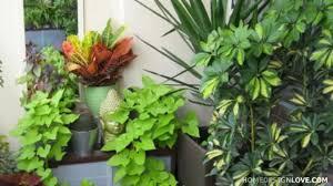 terrace garden ideas precious home design