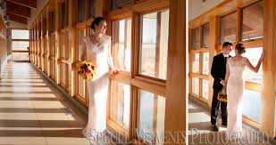 indian springs wedding danielle nathan indian springs metropark white lake smp