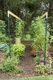 When Should I Start Planting My Vegetable Garden by How To Build A Straw Bale Garden Modern Farmer