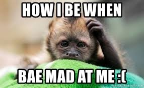 Baby Monkey Meme - how i be when bae mad at me baby monkey meme generator