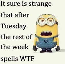 Thursday Meme Funny - f924c734dd4537a4bf66cfa7c5d4e71e jpg 467 462 pixels funny