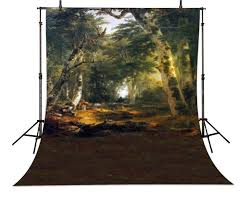 Jungle Backdrop Enchanted Forest Trees Jungle Backdrop High Quality Vinyl Cloth