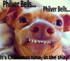 Christmas Dog Meme - 128 best christmas humor images on pinterest merry christmas xmas