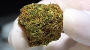 Weed Maps San Diego by 2 Marijuana Dispensaries Raided By Sdpd Nbc 7 San Diego