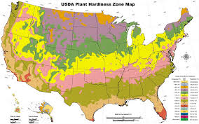 wondering when to plant your garden here is the garden planting