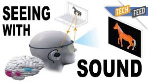 Echolocation For The Blind The Voice Lets The Blind See With Sound Youtube