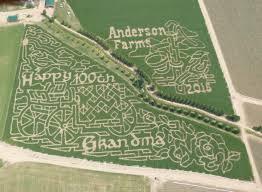 Denver Botanic Gardens Corn Maze 8 Awesome Corn Mazes Around Denver To Visit This Fall