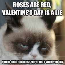 Angry Cat Meme - the best of grumpy cat grumpy cat cat and grumpy cat valentines