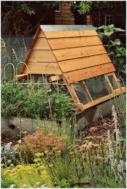 backyards mesmerizing 25 best ideas about backyard chicken coops
