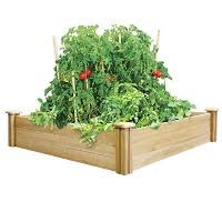 What Type Of Wood For Raised Garden - best type of wood for raised beds the home depot community