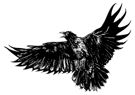 crow clipart tribal pencil and in color crow clipart tribal