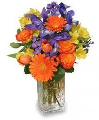 flower shops in colorado springs 25 best get well flowers images on florists flower