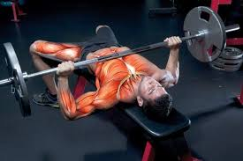 Proper Bench Form Bench Press Personal Record Get A Bigger Bench Press