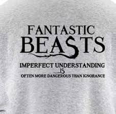 fantastic beasts and where to find them hoodie for men fleece