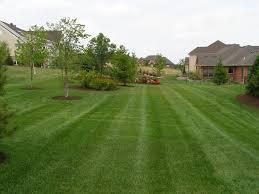 wildes lawn u0026 landscaping llc beavercreek ohio mowing and