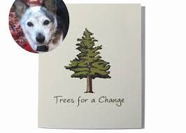 pet condolences pet sympathy cards pet condolences loss of a pet