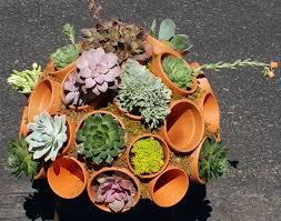 20 succulent container pot clay terracotta and planters