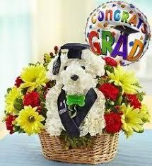 Dog Flower Arrangement 14 Best Graduation And Congratulations Flowers Images On Pinterest
