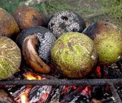 cuisine plus tahiti la cuisine tahitienne on consomme le uru en accompagnement avec le