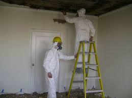 mold remediation atlanta mold remediation pros