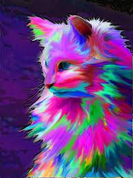 colorful colors resultado de imagen para gato de colores arte pinterest