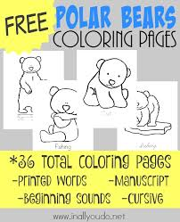 polar bear color page polar bears coloring pages in all you do