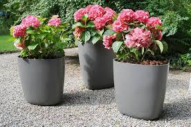 vasi in plastica da esterno gallery of vasi da giardino vasi per piante tipologie di vasi per