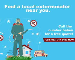 what is the best thing to use to clean wood cabinets how do exterminators get rid of roaches insect cop