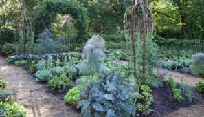 productive fall and winter vegetable gardens with niki jabbour