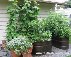 Vegetable Gardening In Pots by Sensational Container Vegetable Garden Decorating Ideas Gallery In
