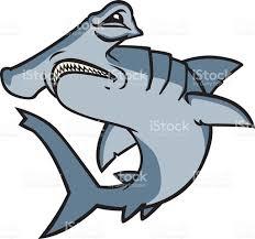 hammerhead shark stock vector art 472287665 istock