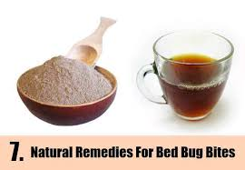 natural bed bug remedies 7 natural remedies for getting rid of bed bugs how to get rid of