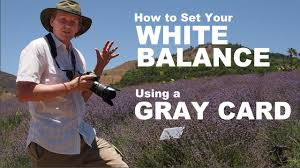 set your camera white balance with a gray card photography guide