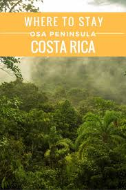 Hidden Canopy Treehouse Monteverde by 962 Best Costa Rica C A Images On Pinterest Costa Rica Places