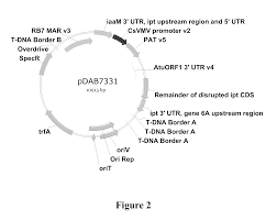 patent us8686222 use of dendrimer nanotechnology for delivery of