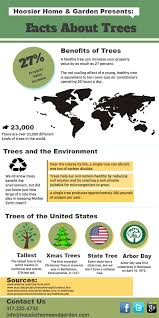 facts about trees benefits of trees hoosier home garden