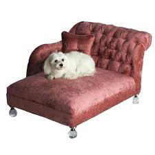 cute dog beds cute dog beds for small dogs u2013 shinesquad