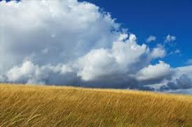The Interior Plains Climate Humid Continental Climate Types For Kids