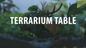 coffee tables reptile coffee table plans terrarium coffee table