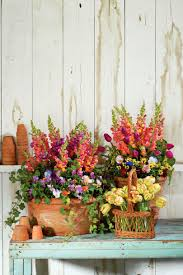 How To Arrange Flowers In A Tall Vase Spectacular Container Gardening Ideas Southern Living