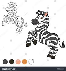 coloring page little zebra stands miles stock vector 419713534