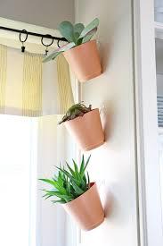 horta em casa u2013boas ideias com toque especial na decoração