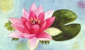 lilypad flower to go with koi fish wetcanvas