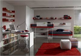 minimalist bunk beds for teen room with red racks and white study
