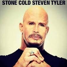 Tyler Meme - stone cold steven tyler funny