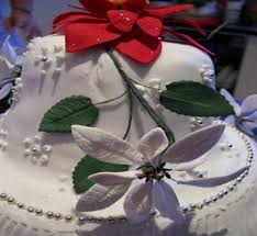 Edible Christmas Cake Decorations Ireland by 48 Best Christmas Cakes Images On Pinterest Christmas Cakes