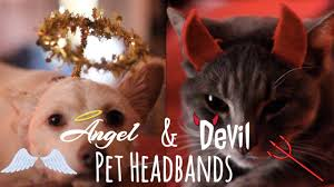 Pet Cat Halloween Costume Diy Pet Halloween Costumes Angel U0026 Devil Headbands